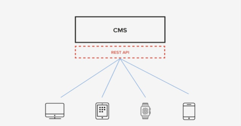 Graphic showing how the WordPress CMS works with the Rest API to deliver content to devices