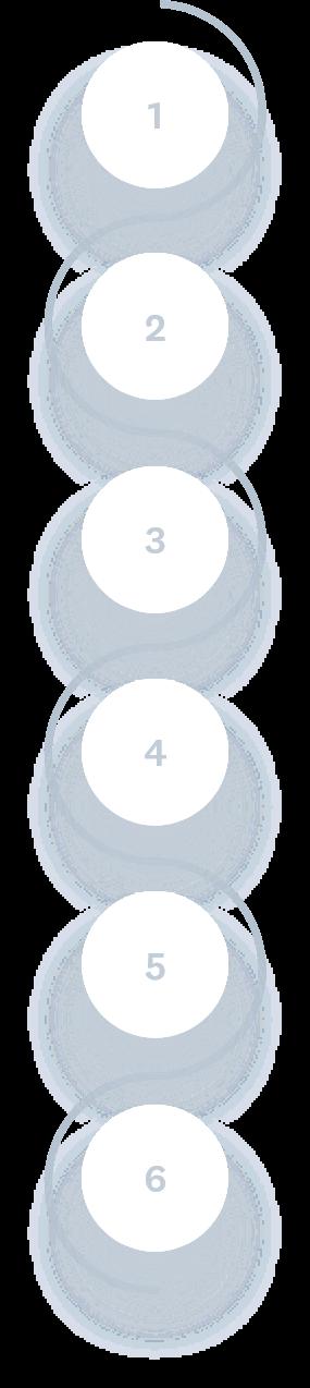 Custom API Development Steps