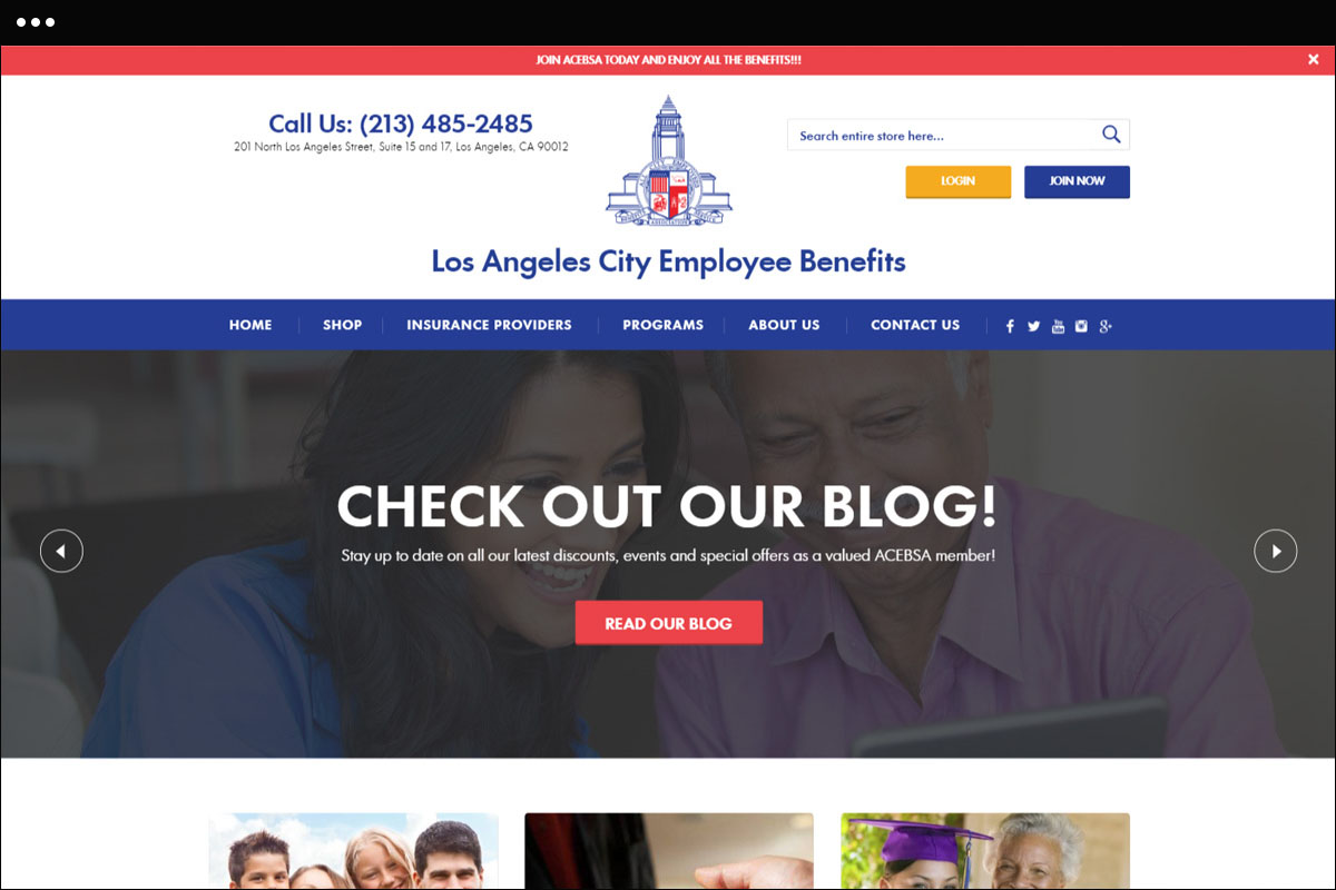 ACEBSA Homepage Design