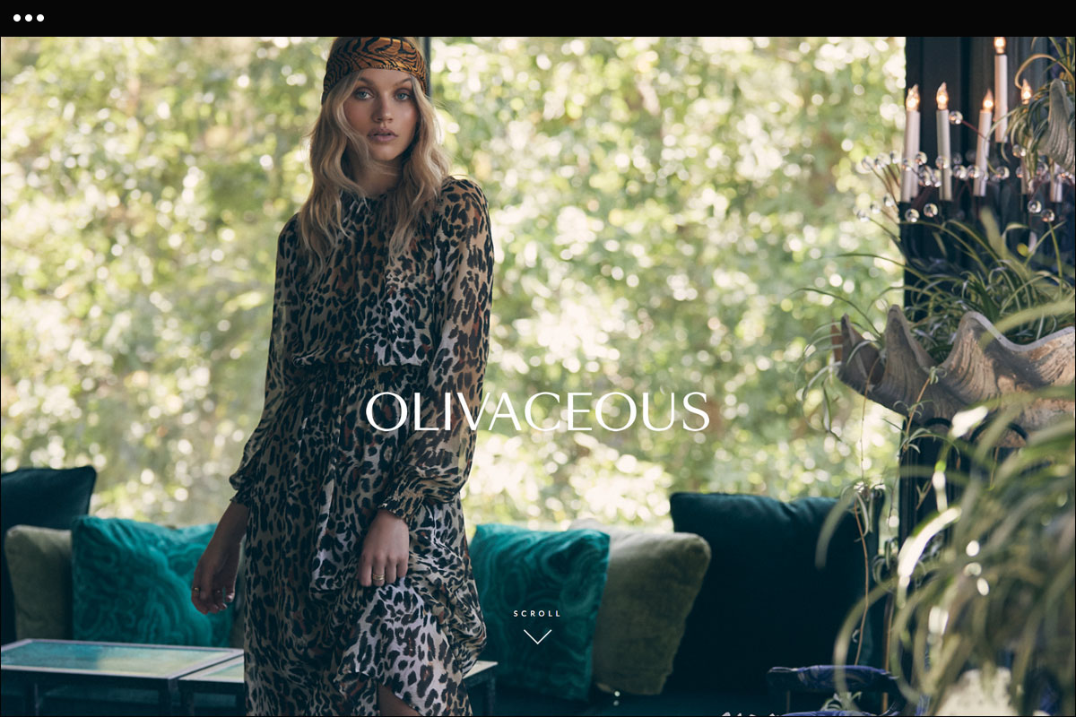 olivaceous Homepage Design